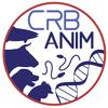 AgroBRC RARe  © CRB Anim