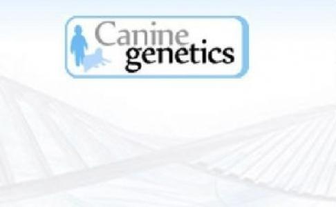 CBR CANI-DNA